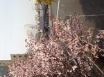 image/2012-04-13T14:26:54-1.jpg